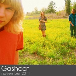 Gashcat Session - November 2011