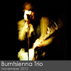 Burntsienna Trio - November 2012