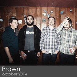Prawn - October 2014